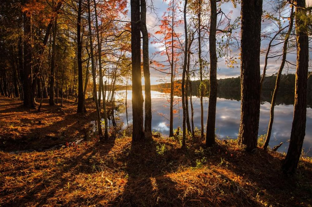 South Carolina's Destination Lakes