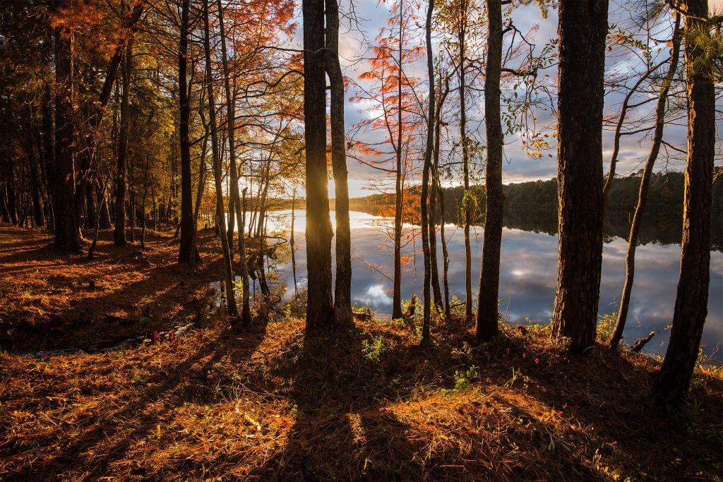 South Carolina's Destination Lakes
