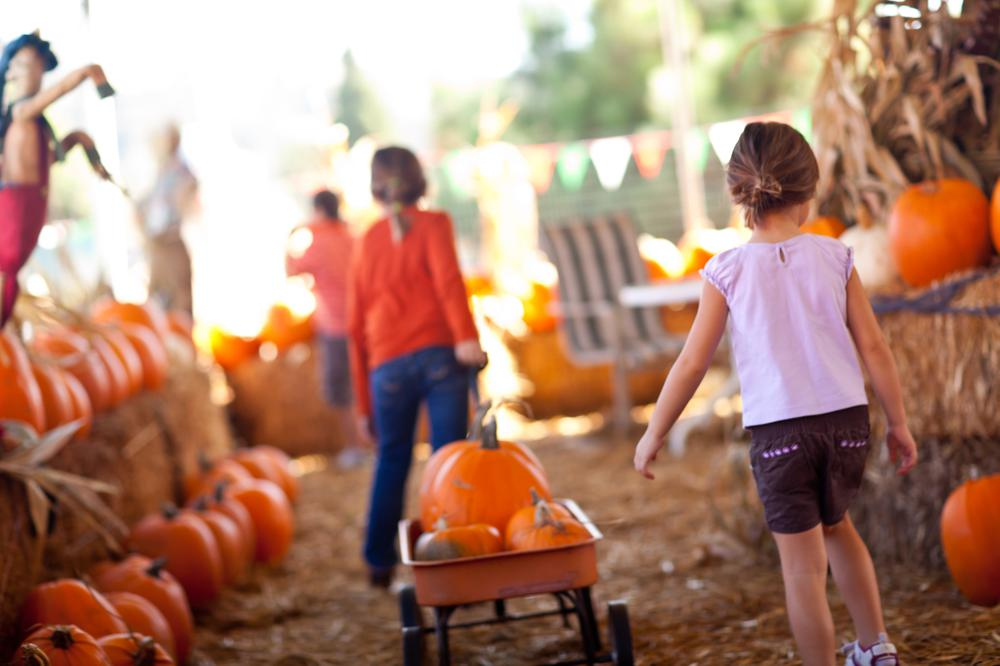 Our Favorite Fall Activities in Locations We Love